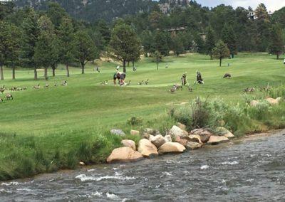 Lake Estes Golf Course